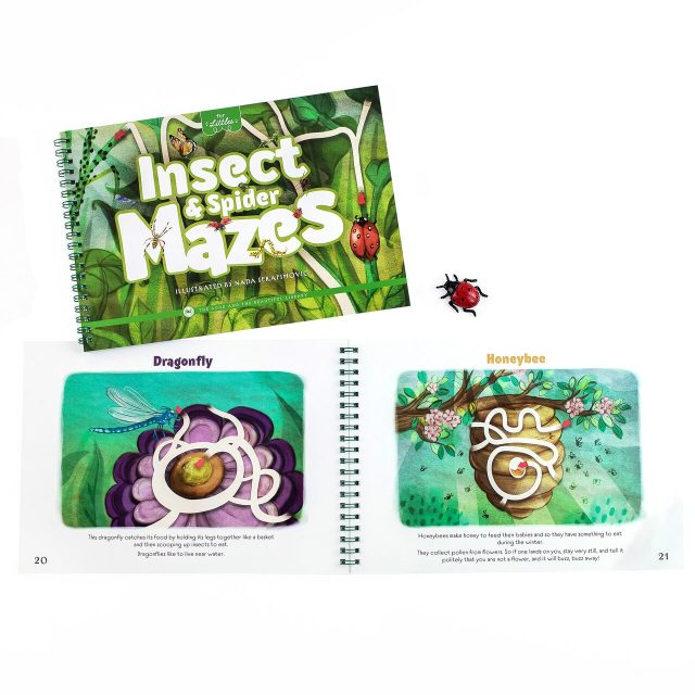 Insect & Spider Mazes